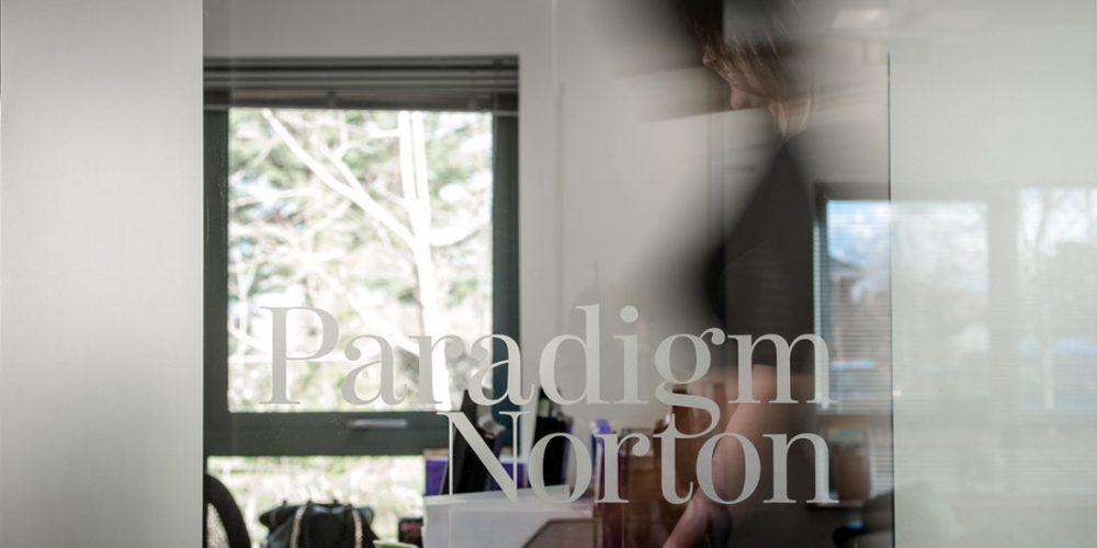 paradigm1-1100x620-portfolio