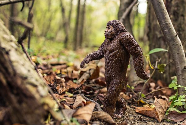Model cave man walking throught the woods showing evolution in financial lead generation